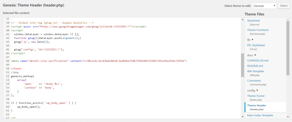 JavaScript added to a WordPress header.