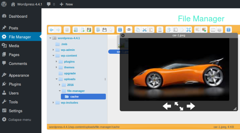 file-manager-wordpress-digital-asset-management