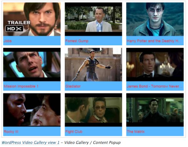 video gallery1
