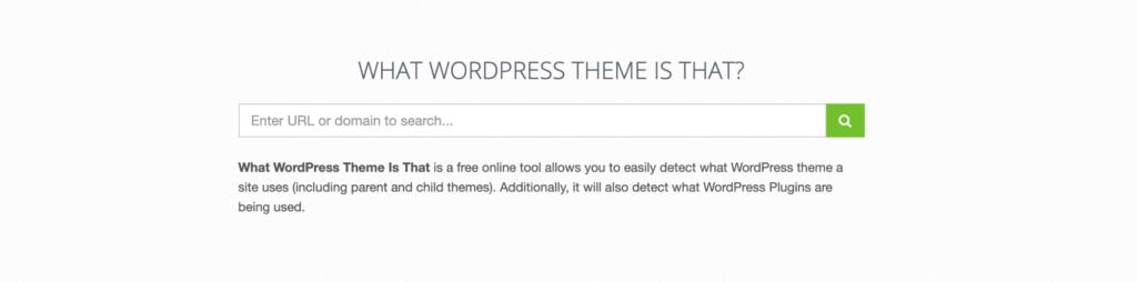What WordPress Theme