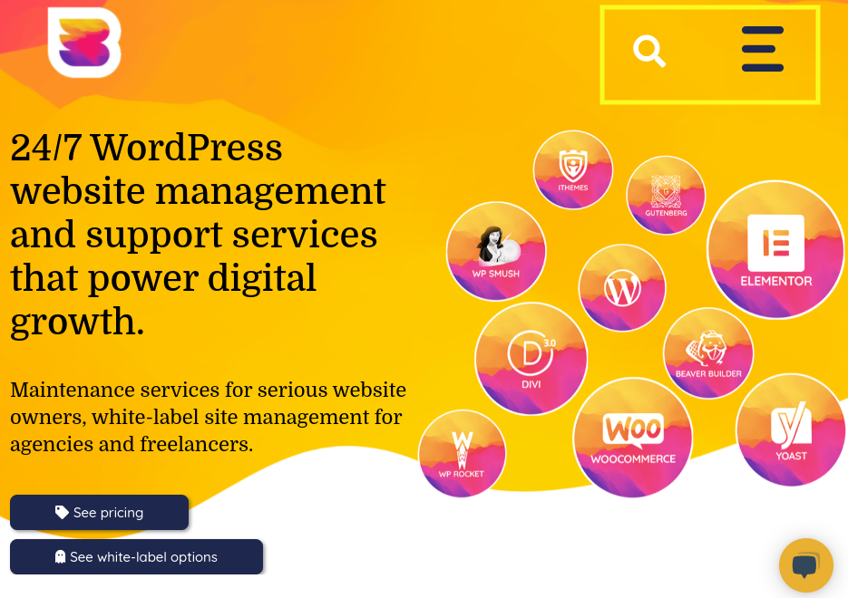 The WP Buffs responsive website.