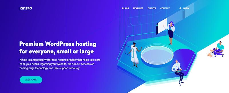 The Kinsta website.