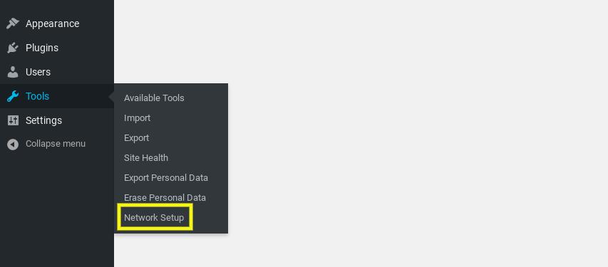 The WordPress Multisite Network Setup menu item.