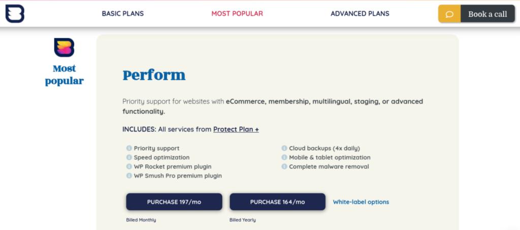 WP Buffs WordPress care plans.