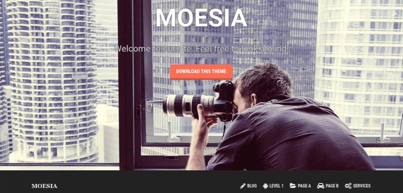 Moesia theme for WordPress