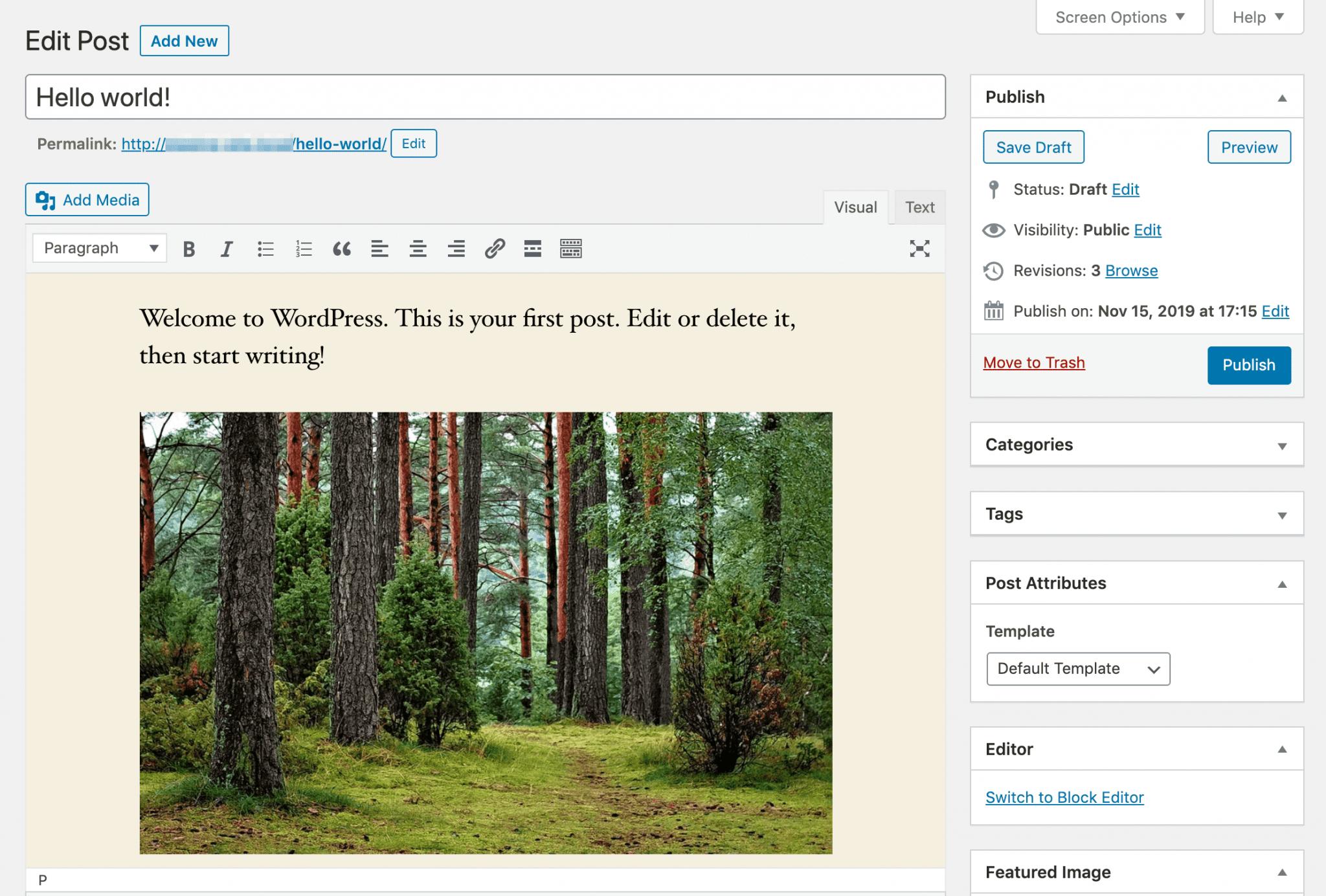 The WordPress Classic Editor.