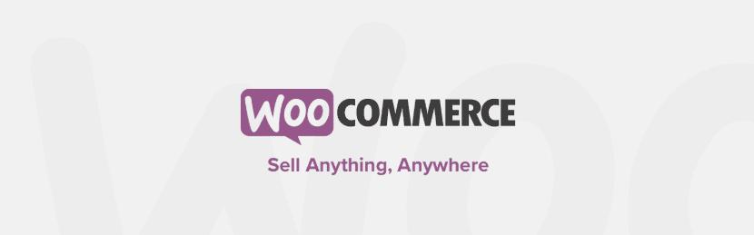 The WooCommerce WordPress plugin.