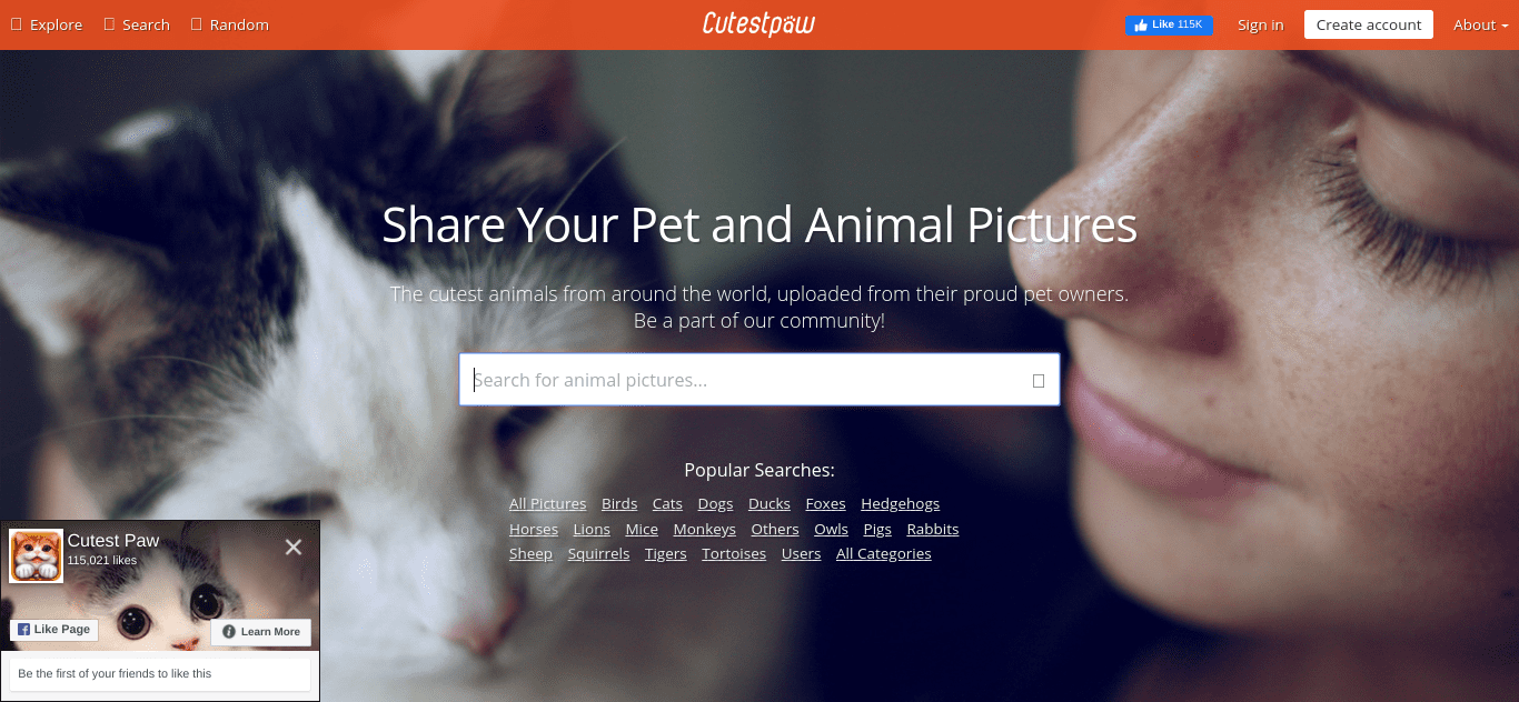 The Cutest Paw website.