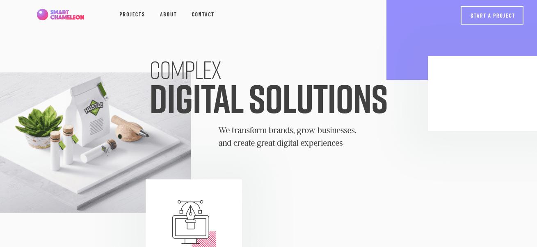 The Smart Chameleon website.