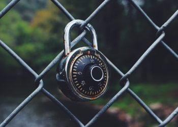 How to Fix WordPress Mixed Content SSL Warnings